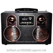 Радио колонка HS-M15 USB,micro SD, FM фото