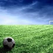 Аренда футбольных полей фото