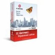 Бухгалтерские пакеты программ, 1С-Битрикс, Управление сайтом, Стандарт фото