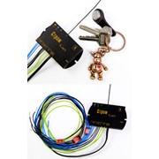 Система контроля и управления СТРАЖ Ключ фото