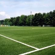 Строительство. Строительство футбольных полей. фото