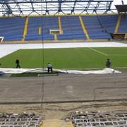 Восстановление травяного покрытия спортивных площадок фото