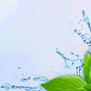 Вода озонированная для детей AQUA green фото