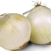 Грин Тим, Лук салатный белый, первый класс, сетка-рукав, 0,5 кг фото