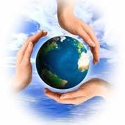 Услуги по генерации и управлению углеродными активами фото