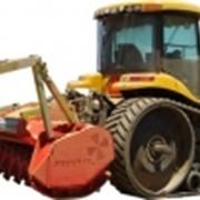 Трактор Challenger MT 765C с мульчером SEPPI M SuperForst 225 фото