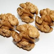 Sale of walnut halves 1/2 to Export. фото