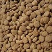 Сухие корма для животных. фото