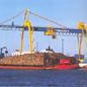 Краны подъемные для погрузки, разгрузки и перегрузки грузовых контейнеров фото