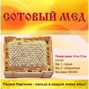 Мёд горный Эремурусовый фото