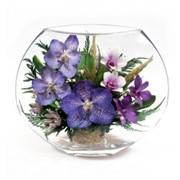 Композиция из орхидей EMO-03 фото