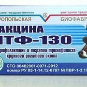 ЛТФ-130 фото