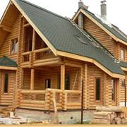 Гостевые дома из оцилиндрованного бревна фото