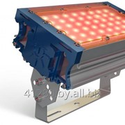 Прожектор TL-PROM 50 PR PLUS FL (Д) Amber фото