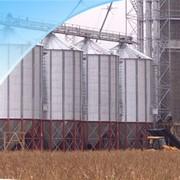 Проектирование зерновых комплексов фото