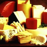 Продажа сыров фото