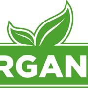 Сертификация органической продукции фото