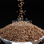 Зерновые продукты фото