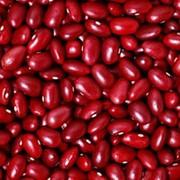 Фасоль красная, 500 гр фото