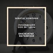 Ликвидация ООО за 24 часа  фото