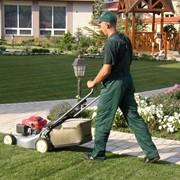 Услуги садовников фото