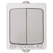 Выключатель Светозар Аврора двухклавишный, IP44, цвет серо-белый, 10А/~250В Код:SV-54336-W фото