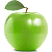 Яблоки (MALUS SPP) фото