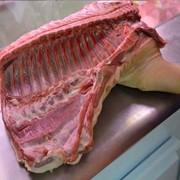 Свинина в/ш 4 категории (свиноматки) фото
