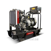 Дизельный генератор Himoinsa HYW-17 T5-M6 фото