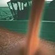 Очистка и хранение зерна на элеваторе. фото