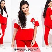 Спортивный костюм женский с короткими рукавами (2 цвета) PY/-1017 - Красный фото