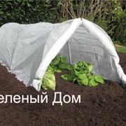 Агроволокно для защи растений и повышения урожаев фото