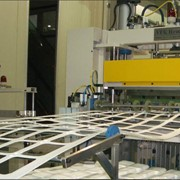 Термоформовочное оборудование. Для термоформовочных изделий: стаканы, контейнеры ПП, ПС, ПЭТ фото