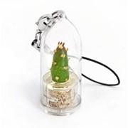 Нидл Minicactus брелок с живым растением фото