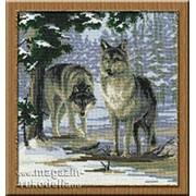 Набор для вышивания Волки фото