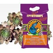 Почвогрунт для кактусов и суккулентов фото