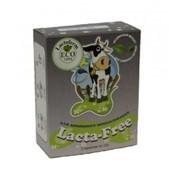 Фермент Lacta-free LAKTOFERM ECO фото