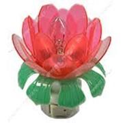 Ночник Лилия (в комплекте лампочка лилия ) №872063 фото
