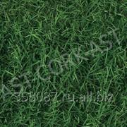 Клеевой пробковый пол Corkstyle, Fantasy & Stone, Green 915х305х6мм уп.3,36 м2 фото