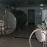 Танк охладитель молока закрытого типа фото