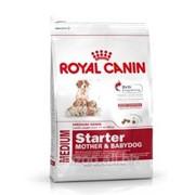 Сухой корм для щенков Royal Canin Medium Starter 1 кг фото