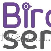 Контакт-центр BirdService фото