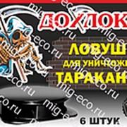 Ловушка от тараканов Дохлокс (6 шт) фото