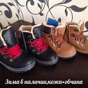 Зимние ботинки 2 цвета фото