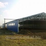 Склад, Ангар /Hangare si depozite agricole фото