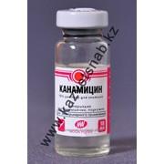 Канамицин 10мл препарат для ветеринарии фото