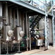Производство концентрированного молока фото