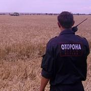 Охрана полей, контроль сбора урожая. фото