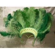 Бразильский костюм для танца, карнавала, корпоратива. Воротник перьевой
