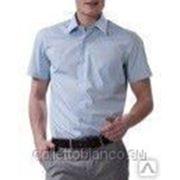 000913 Прямая рубашка LR(46-50) Allan Neumann фото